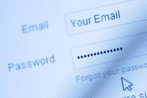 fake password checking site